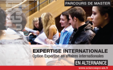 Expertise en affaires internationales : candidatez au master 2 en alternance